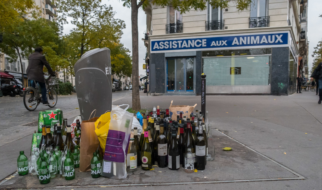 Animaux alcooliques anonymes